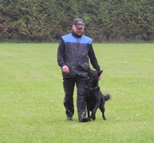 Hundeführer beim Begleithundetraining